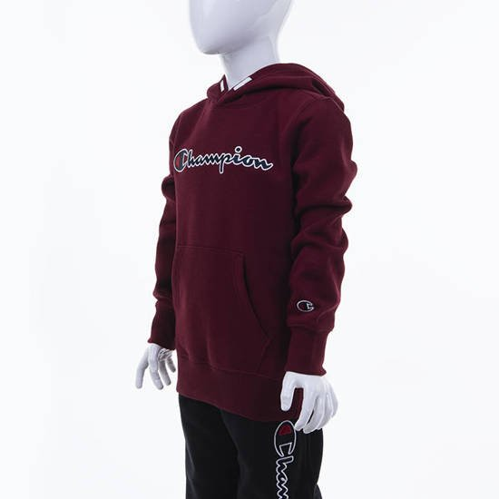 Champion Hooded Sweatshirt 305376 RS501
